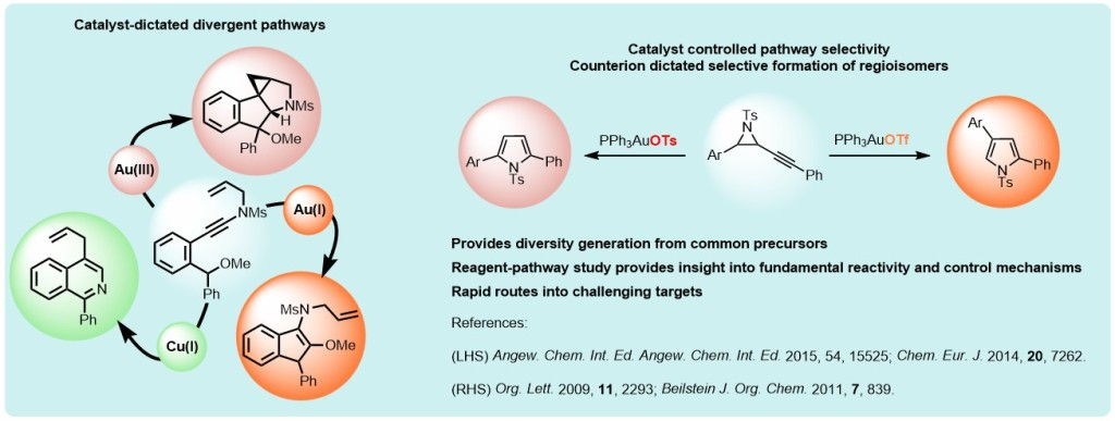 A chemdraw picture outlining some of the chemistry developed in the research group. Specifically it shows work from two papers whereby the same substrate is transformed into different products through the use of different catalyst systems. On the left, three different reactions of ynamides under Au(I), Au(III) and Cu(I) catalysis, and on the right, the isomerisation of alkynyl aziridines where the choice of counterion dictates the regioisomeric outcome. See Angew Chem 2016, 54, 15525 and Org. lett. 2009, 11, 2293 for details