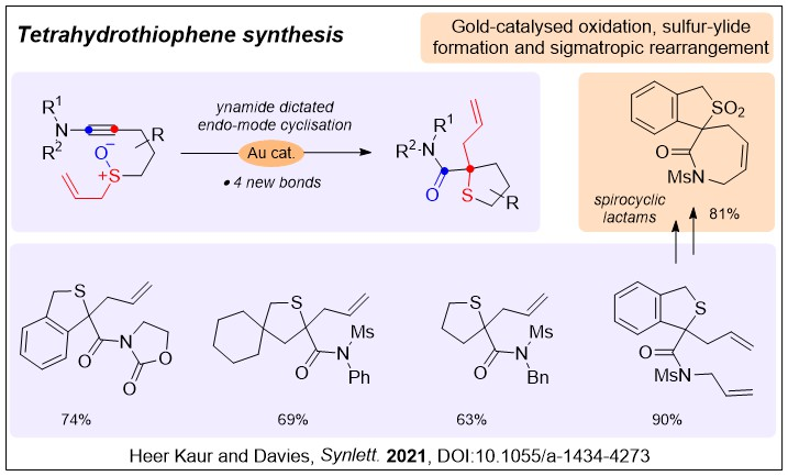 A chemdraw diagram summarising the transformation of ynamides into tetrahydrothiophenes by an oxidation, ylide formation and rearrangement process catalysed by gold.